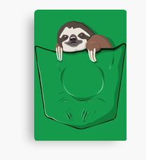 Sloth in a pocket Canvas Print