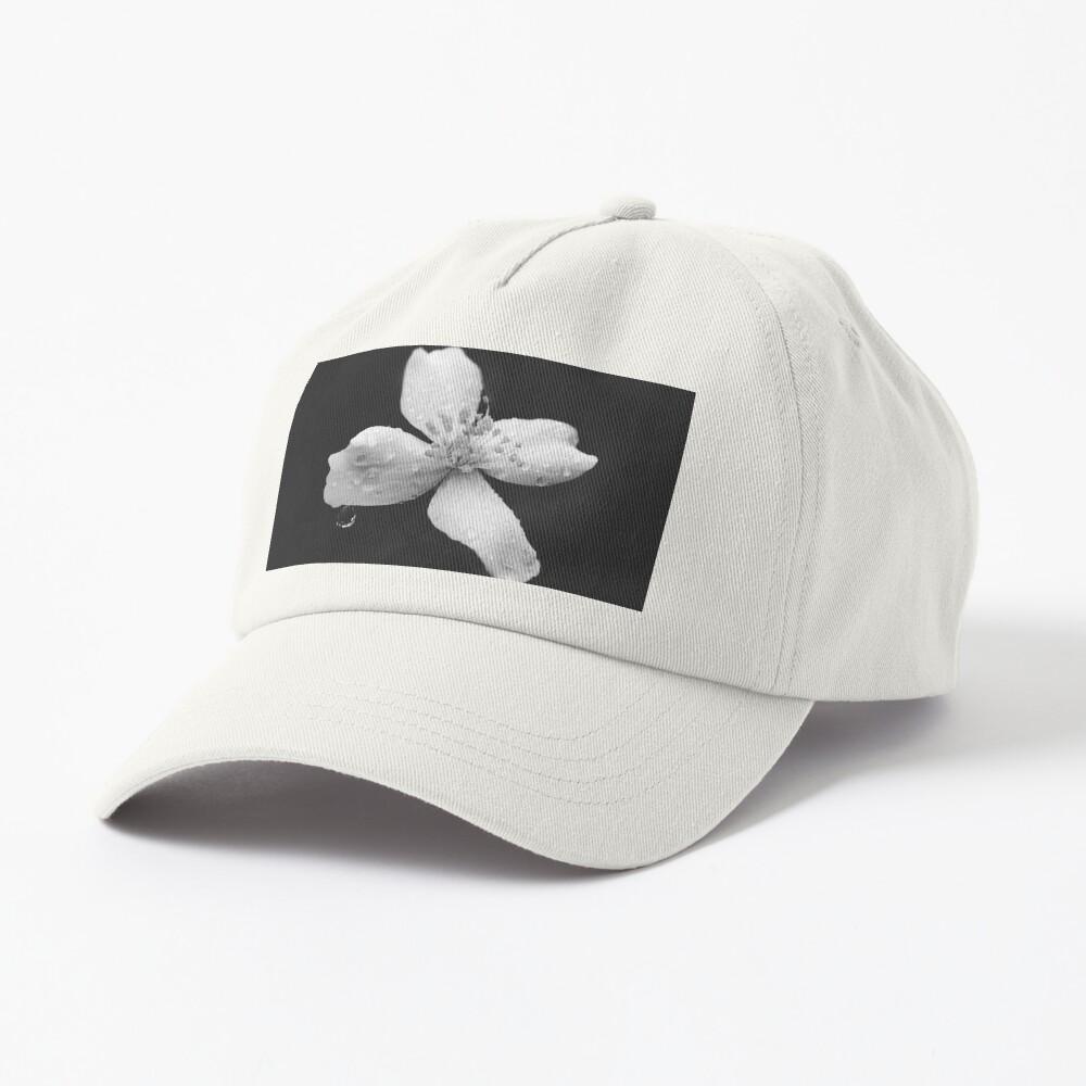 Black and white nature blossom flower close-up Cap