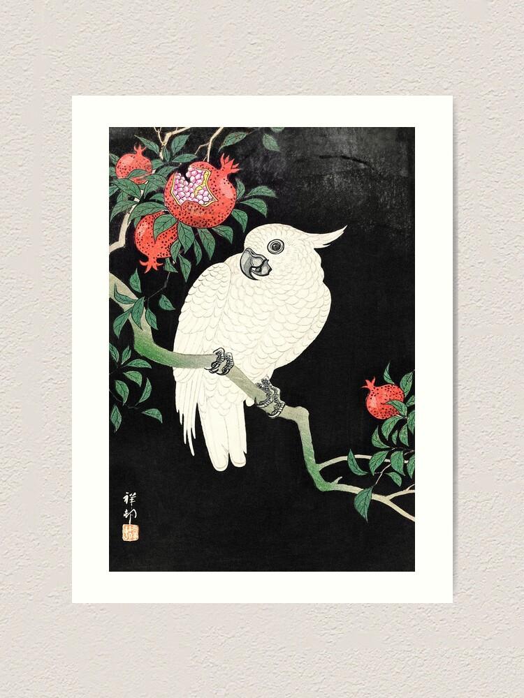 Alternate view of Cockatoo and Pomegranate (1877–1945) - Ohara Koson Art Print