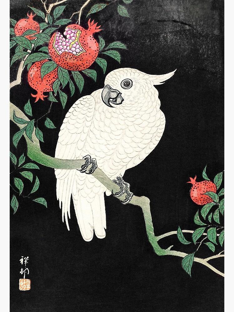 Cockatoo and Pomegranate (1877–1945) - Ohara Koson by chamomile-cafe