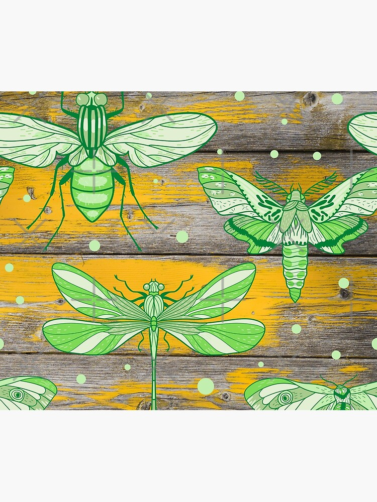 Insect on Wood Grain by Lilac-Beetle