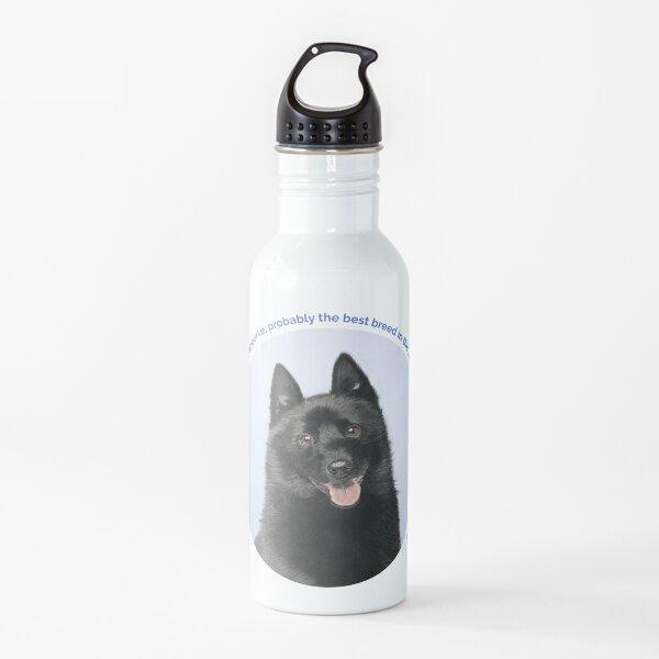 Schipperke portrait Water Bottle