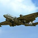 English Electric Canberra T.4 WT480/BC by Colin Smedley