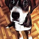 Marty The Soulful Eyed Dog  by taiche