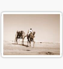 Desert scene with camels Sticker