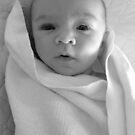 First Grandchild by Christine  Wilson