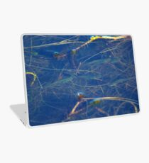 A Bit Fishy Laptop Skin