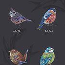 British Birds - Volume 1 by Jezhawk
