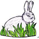 Rabbit in grass by Kari Sutyla