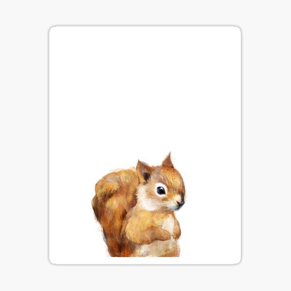 Little Squirrel Sticker