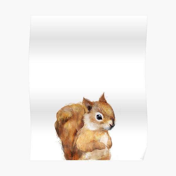 Little Squirrel Poster