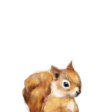 Kleines Eichhörnchen von AmyHamilton