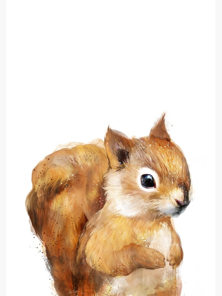 Little Squirrel by AmyHamilton