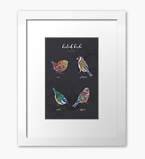 British Birds - Volume 2 Framed Print