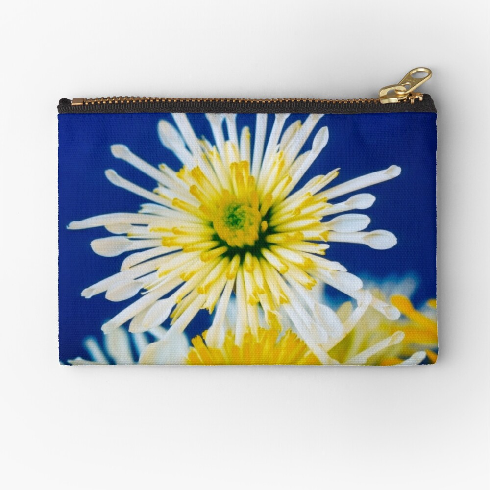 One Above Zipper Pouch