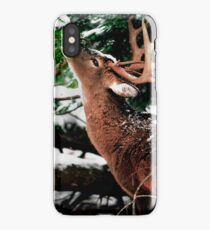 Taste O'wintergreen iPhone Case/Skin