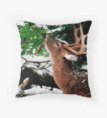 Taste O'wintergreen Throw Pillow