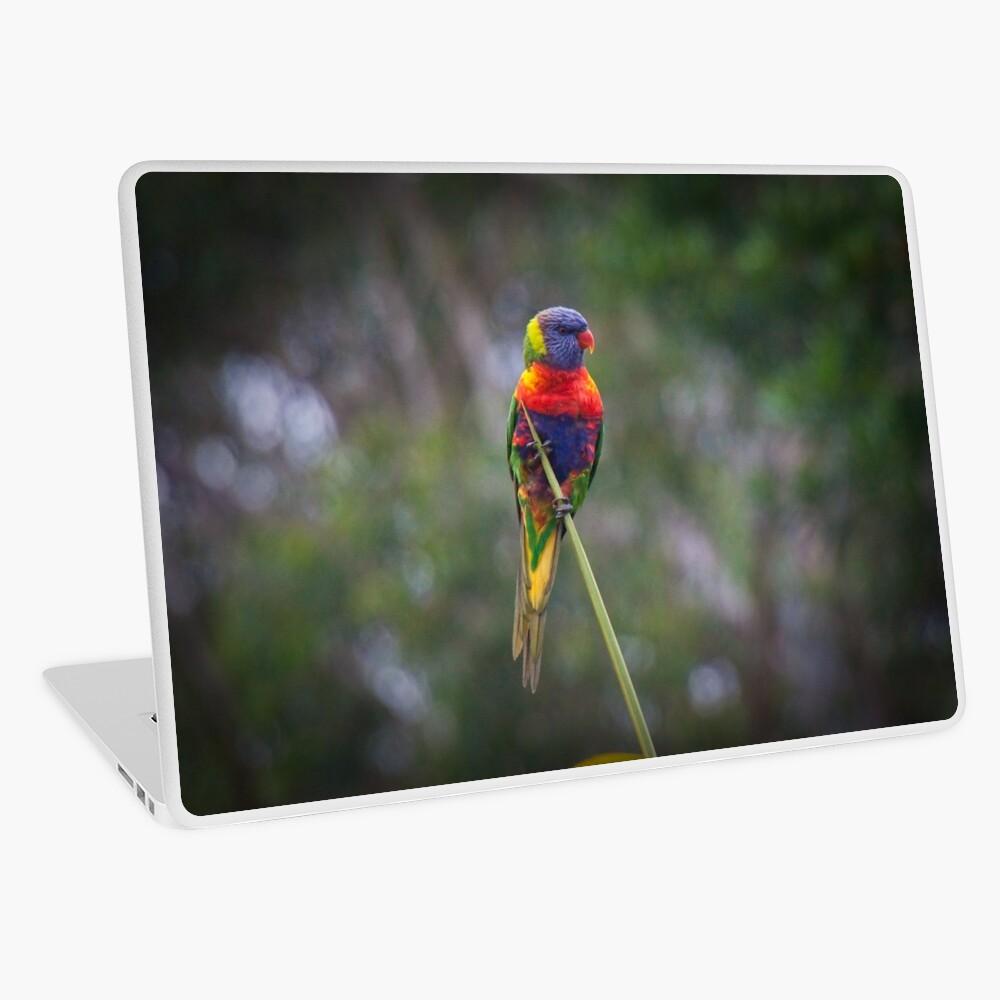 Bird on a wire Laptop Skin