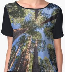 Surrounding Monster Trees - Nature Photography Women's Chiffon Top