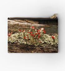 What Is It? Solved by CynLynn,  British Soliders Lichens Studio Pouch