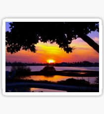 Sunset under two canopies Sticker