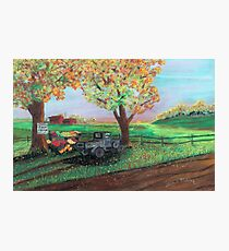 Farm Fresh Photographic Print