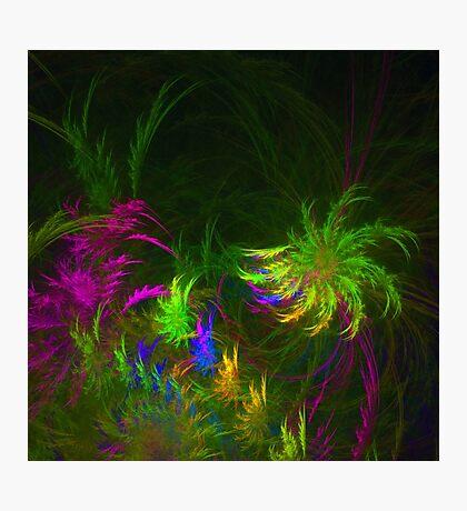 Jungle #fractal art 2 Photographic Print