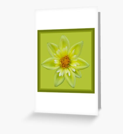 Tufted Yellow Dahlia  Greeting Card