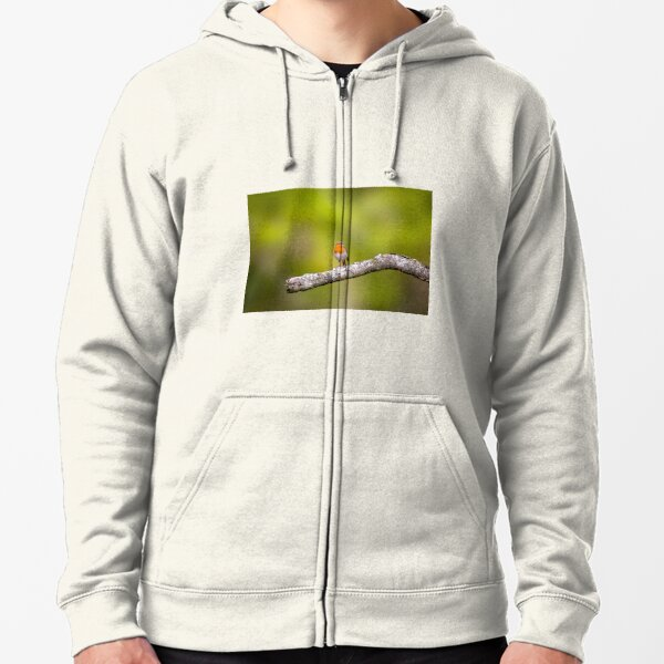A Robin perched on the branch of a tree Zipped Hoodie