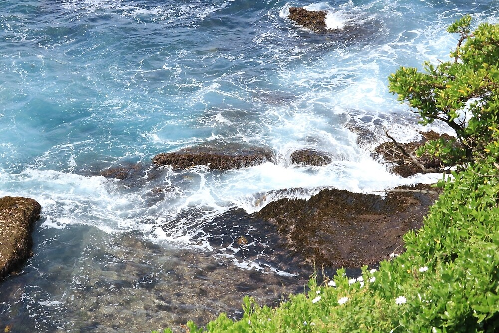 Photographs of Bondi Beach by daniellaT97