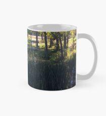 Fall in Rice Lake Wisconsin Mug