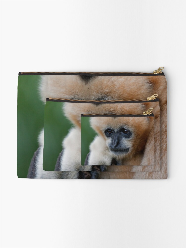 Alternate view of White Cheeked Gibbon Zipper Pouch