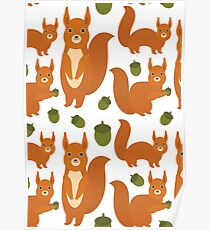 Red Squirrels Poster