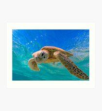 Green Turtle in Magical Water Art Print
