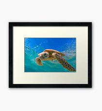 Green Turtle in Magical Water Framed Print