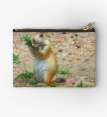 Keeper of the prairie Studio Pouch