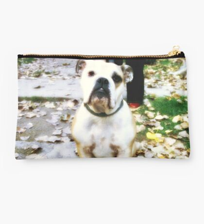 Posing Dog Studio Pouch