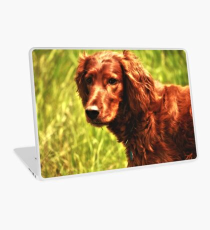 Beautiful Dog Portrait  Laptop Skin
