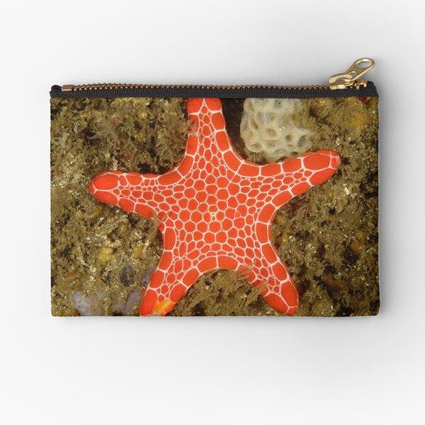 Red Brick Sea Star Zipper Pouch