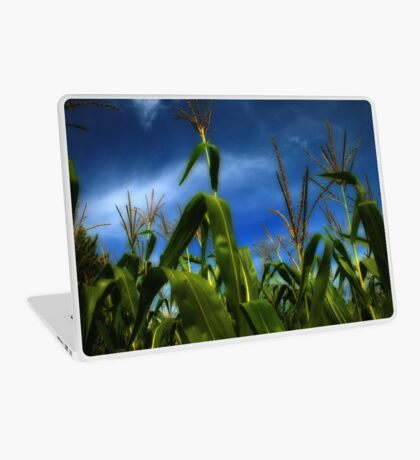 Field Of Dreams Laptop Skin