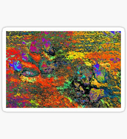 Paw Prints Colour Frenzy Sticker
