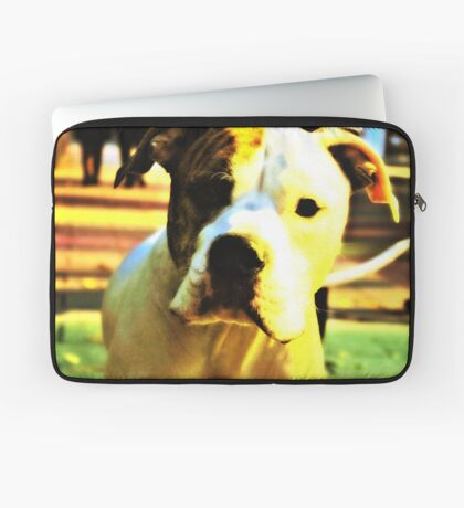 Dog In Colors Lights Laptop Sleeve