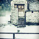 House near the wood by Silvia Ganora