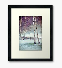 Two birches Framed Print