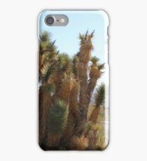 Cactus at Silver Reef Mines  iPhone Case/Skin