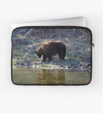 """Cinnamon"" Black Bear - Reflection Laptop Sleeve"