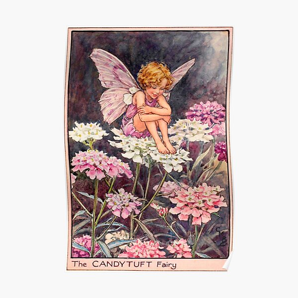 """""""The Candytuft Fairy"""" by Cicely Mary Barker (1922) Poster"""