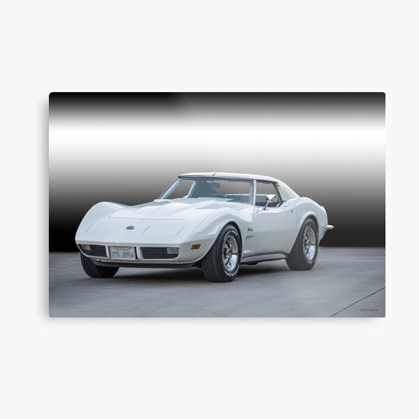 1973 Chevrolet Corvette Stingray Metal Print