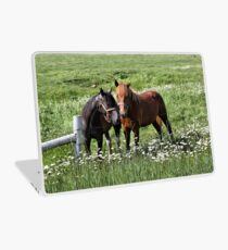 South Dakota Horses Laptop Skin