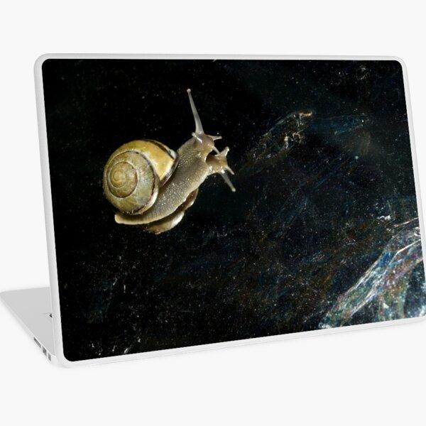 Sea Snail Squid Fantasy Vintage PC Computer Mouse Mat Pad
